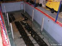 S3 bassin
